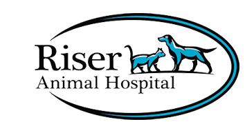 Veterinarians Skokie | Riser Animal Hospital